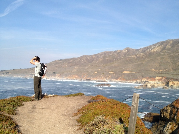 Jackson in Big Sur